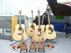 ギターとウクレレ