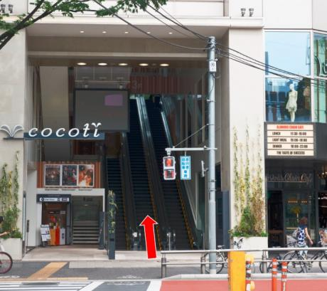 cocoti正面口
